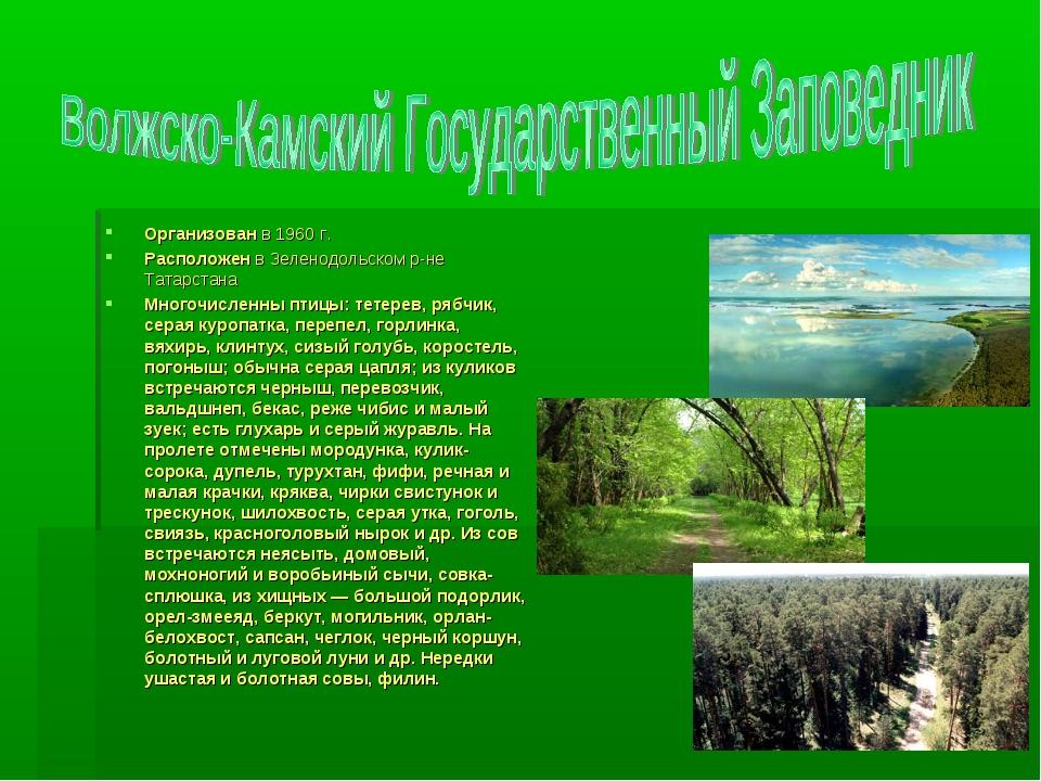 Организован в 1960 г. Расположен в Зеленодольском р-не Татарстана Многочислен...
