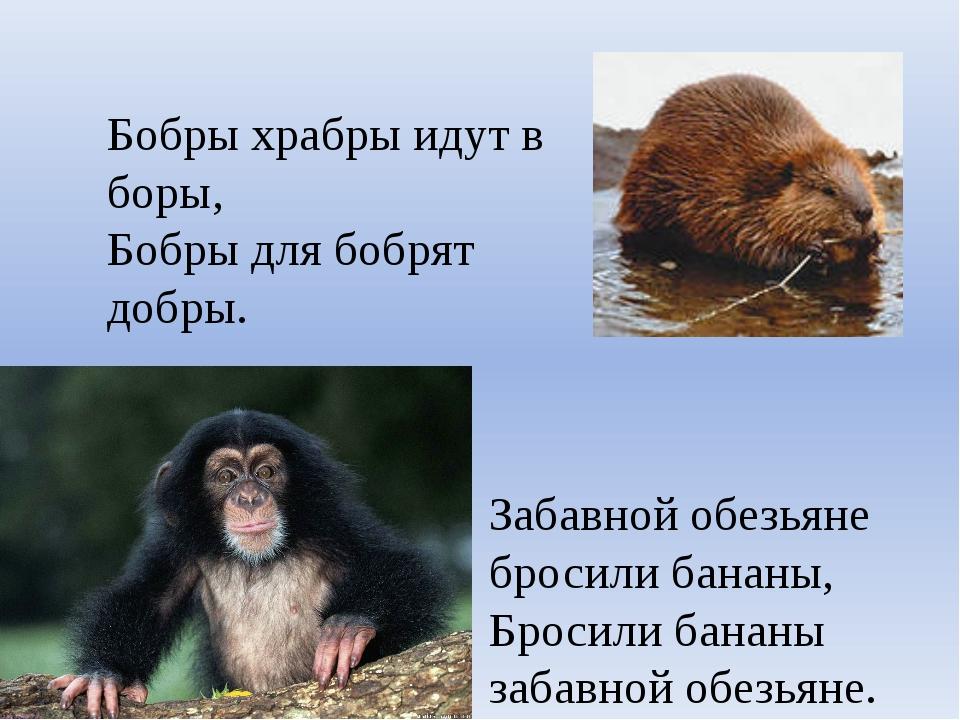 Бобры храбры идут в боры, Бобры для бобрят добры. Забавной обезьяне бросили б...