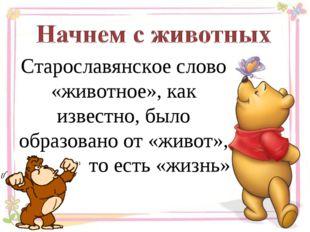 Старославянское слово «животное», как известно, было образовано от «живот», т