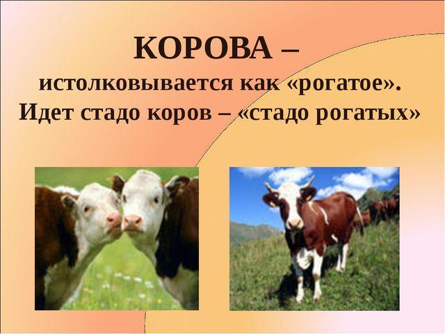 КОРОВА – истолковывается как «рогатое». Идет стадо коров – «стадо рогатых»