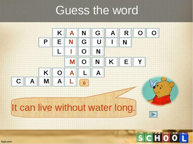 Guess the word 6 K A N G A R O O It can live without water long. P E N G U I...