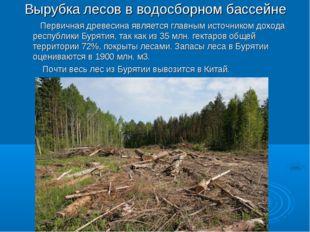 Вырубка лесов в водосборном бассейне Первичная древесина является главным ист
