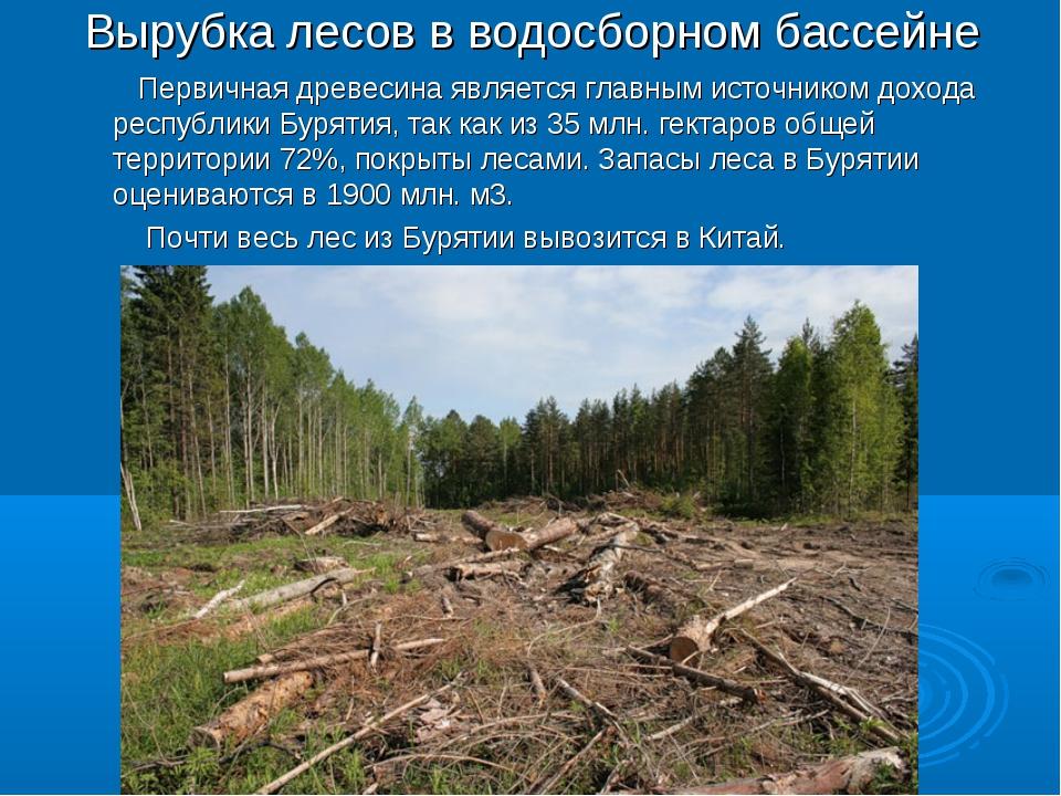Вырубка лесов в водосборном бассейне Первичная древесина является главным ист...