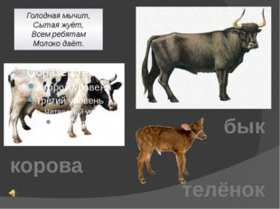 Голодная мычит, Сытая жуёт, Всем ребятам Молоко даёт. корова бык телёнок