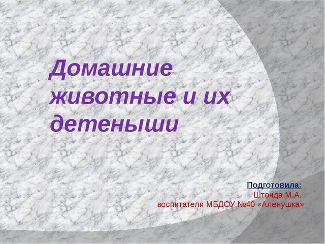Домашние животные и их детеныши Подготовила: Штонда М.А. воспитатели МБДОУ №4...