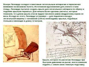 Вскоре Леонардо охладел к винтовым летательным аппаратам и переключил внимани