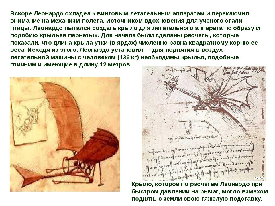 Вскоре Леонардо охладел к винтовым летательным аппаратам и переключил внимани...