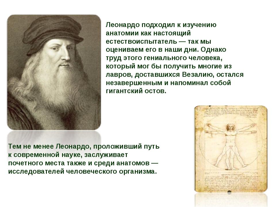 Леонардо подходил к изучению анатомии как настоящий естествоиспытатель — так...