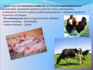 Среди отраслей сельского хозяйства преобладает животноводческое направление: