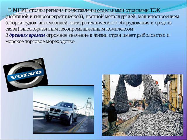 В МГРТ страны региона представлены отдельными отраслями ТЭК (нефтяной и гидр...