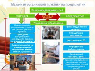 Механизм организации практики на предприятии Отчет по практике КОЛЛЕДЖ ПРЕДПР