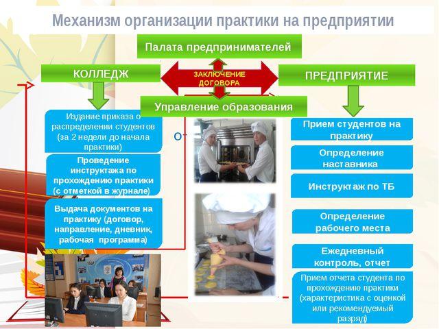 Механизм организации практики на предприятии Отчет по практике КОЛЛЕДЖ ПРЕДПР...