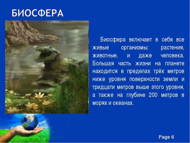Биосфера включает в себя все живые организмы: растения, животные, и даже чел...
