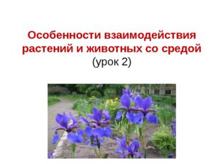 Особенности взаимодействия растений и животных со средой (урок 2)