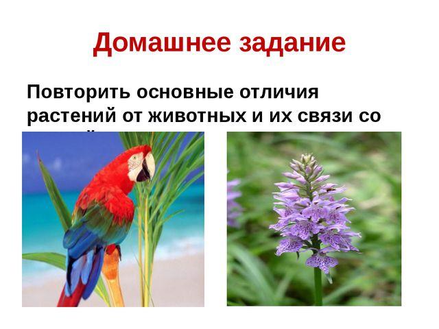 Домашнее задание Повторить основные отличия растений от животных и их связи с...