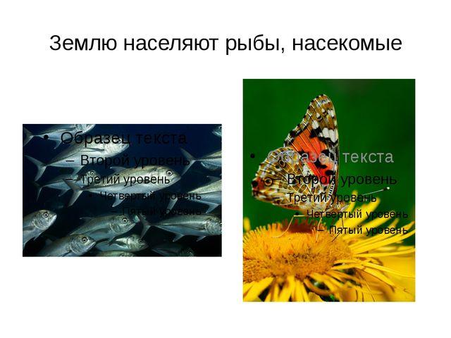 Землю населяют рыбы, насекомые