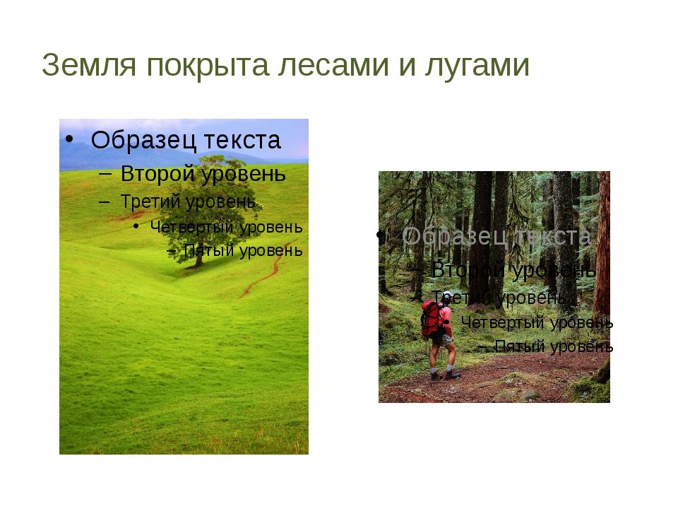 Земля покрыта лесами и лугами