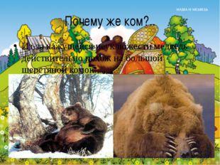 Почему же ком?.. Из-за кажущейся неуклюжести медведь действительно похож на б