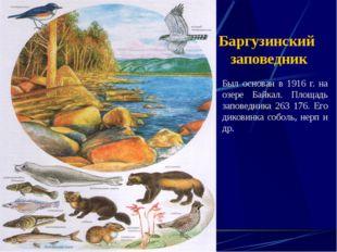 Баргузинский заповедник Был основан в 1916 г. на озере Байкал. Площадь запове