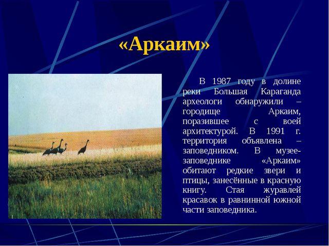«Аркаим» В 1987 году в долине реки Большая Караганда археологи обнаружили –...