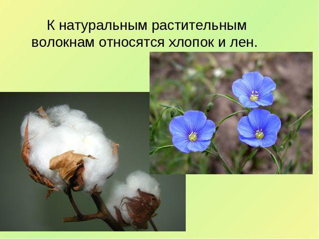 К натуральным растительным волокнам относятся хлопок и лен.
