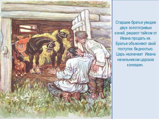 Старшие братья увидев двух золотогривых коней, решают тайком от Ивана продать...