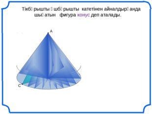 С В Тікбұрышты үшбұрышты катетінен айналдырғанда шығатын фигура конус деп ат