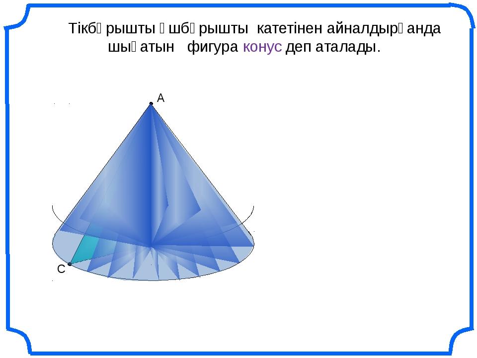 С В Тікбұрышты үшбұрышты катетінен айналдырғанда шығатын фигура конус деп ат...