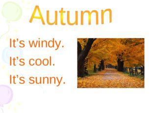 It's windy. It's cool. It's sunny.
