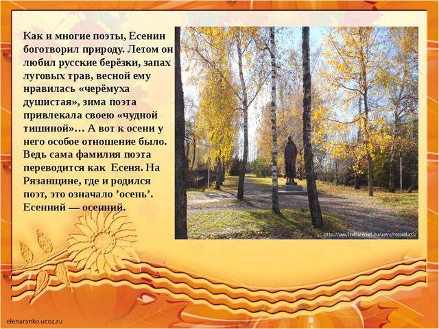 Как и многие поэты, Есенин боготворил природу. Летом он любил русские берёзки...