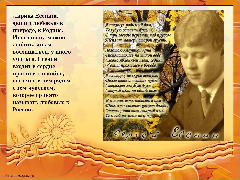 Лирика Есенина дышит любовью к природе, к Родине. Иного поэта можно любить, и...