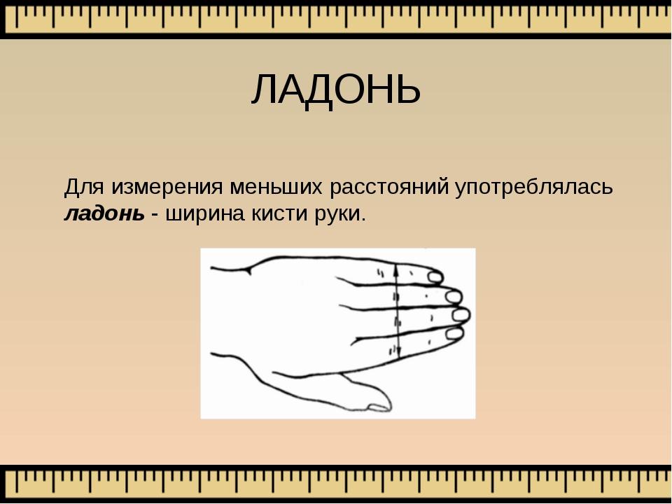 ЛАДОНЬ Для измерения меньших расстояний употреблялась ладонь - ширина кисти р...