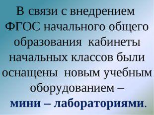 В связи с внедрением ФГОС начального общего образования кабинеты начальных кл