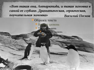 «Вот такая она, Антарктида, и такая зимовка в самой ее глубине. Драматическа