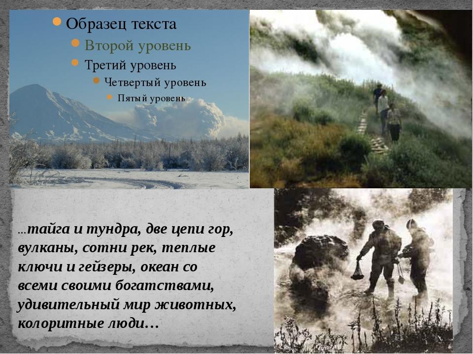 …тайга и тундра, две цепи гор, вулканы, сотни рек, теплые ключи и гейзеры, о...