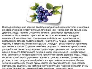 В народной медицине черника является популярнейшим средством .Из листьев и по