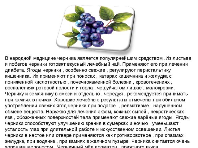 В народной медицине черника является популярнейшим средством .Из листьев и по...