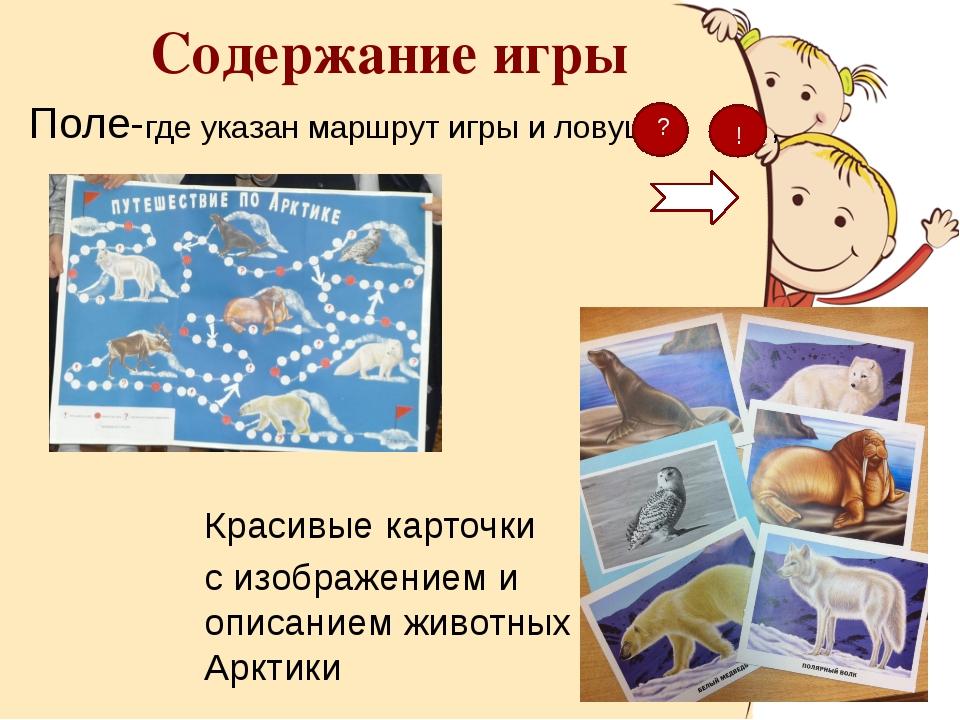 Поле-где указан маршрут игры и ловушки , Красивые карточки с изображением и о...