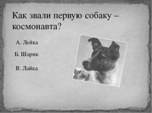 Как звали первую собаку – космонавта? А. Лейка Б. Шарик В. Лайка