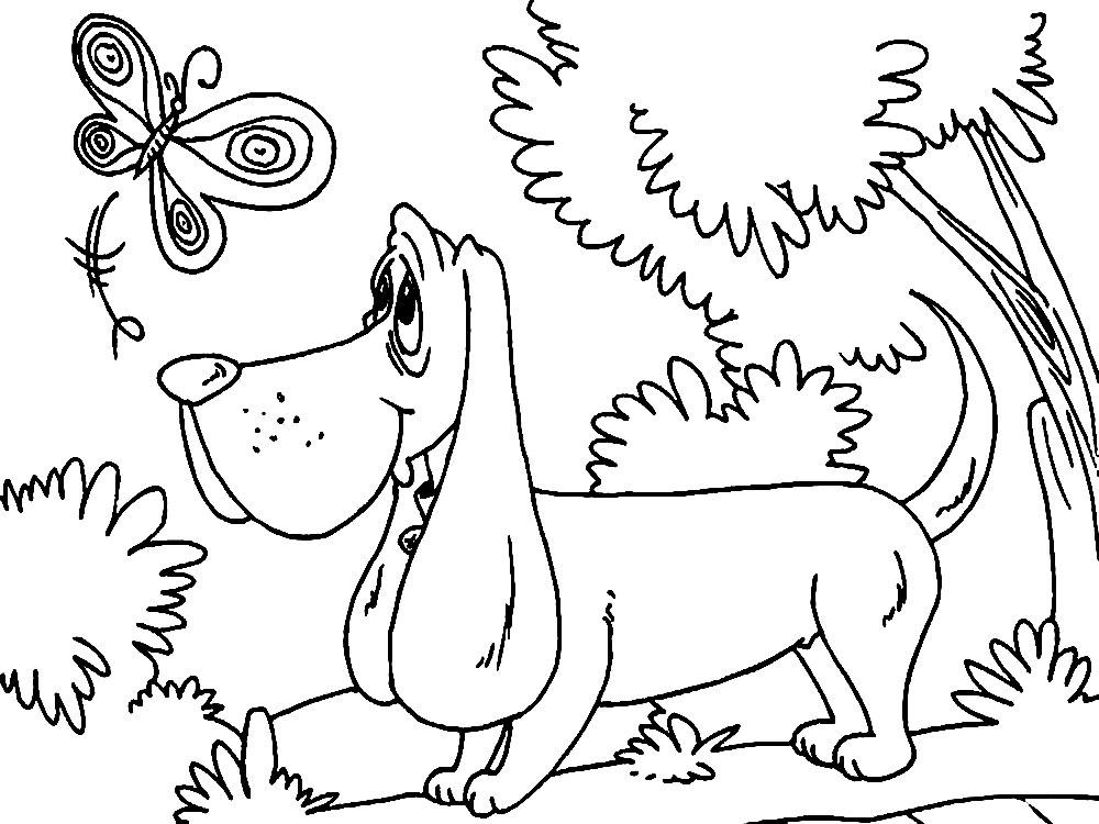 Проходной балл. собачка раскраска для детей Поступаем вместе. Форум