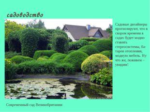 садоводство Современный сад Великобритании Садовые дизайнеры прогнозируют, чт