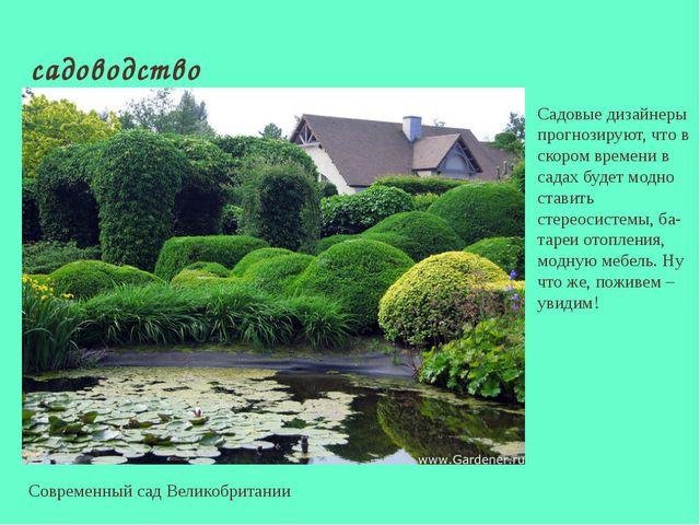 садоводство Современный сад Великобритании Садовые дизайнеры прогнозируют, чт...