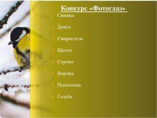 Синица Дятел Свиристель Щегол Сорока Ворона Поползень Голубь Конкурс «Фотоглаз»