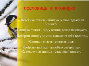 «Невелика птичка-синичка, а свой праздник помнит», «Синичка пищит - зиму вещи
