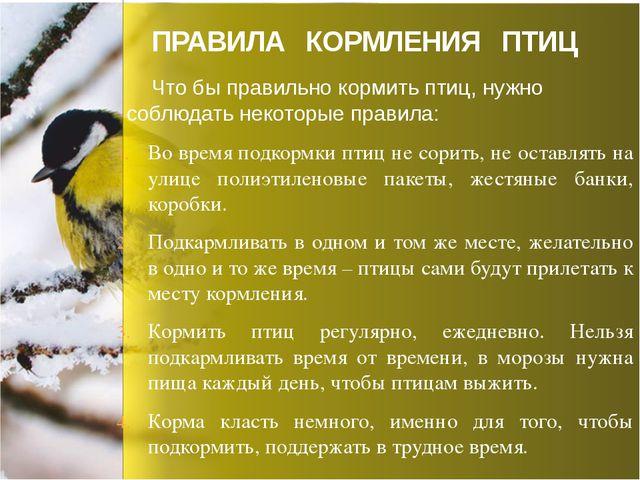 Во время подкормки птиц не сорить, не оставлять на улице полиэтиленовые пакет...