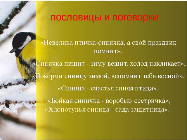 «Невелика птичка-синичка, а свой праздник помнит», «Синичка пищит - зиму вещи...