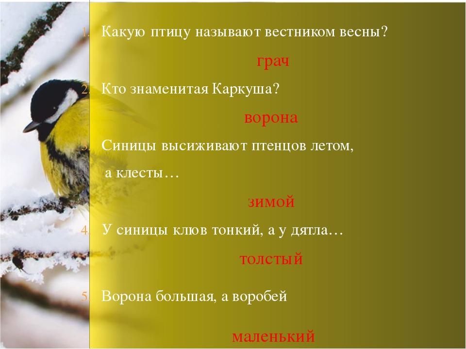 Какую птицу называют вестником весны? грач Кто знаменитая Каркуша? ворона Син...