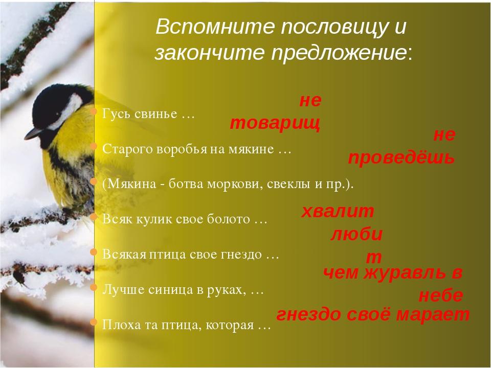 Гусь свинье … Старого воробья на мякине … (Мякина - ботва моркови, свеклы и п...