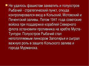 Не удалось фашистам захватить и полуостров Рыбачий - стратегический пункт, от