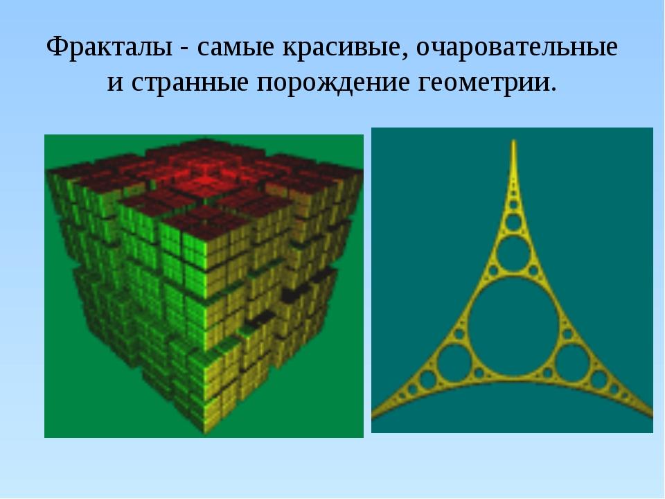Фракталы - самые красивые, очаровательные и странные порождение геометрии.
